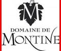 Brand Montine
